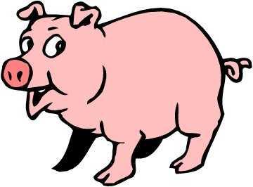 babi-lucu-59faeaf4c252fa6e061a6af2